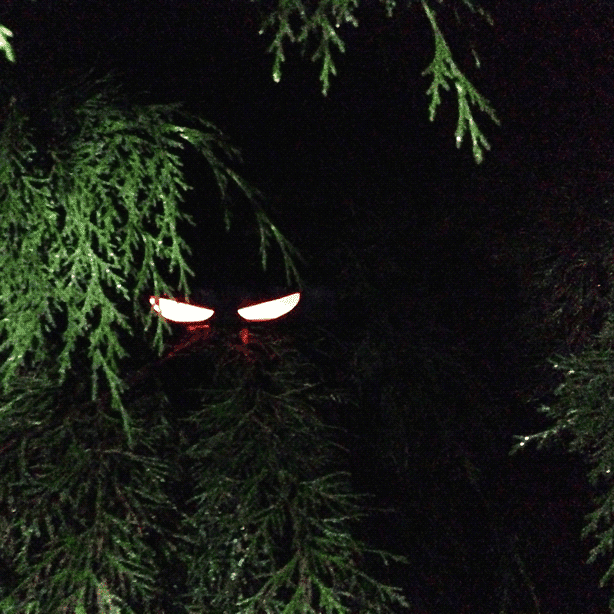 DIY Halloween Decor - Glowing Eyes