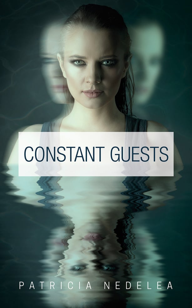 Top Indie Published Novels: Constant Guests
