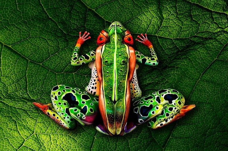 No. 2 johannes stoetter frog body painting masterpiece