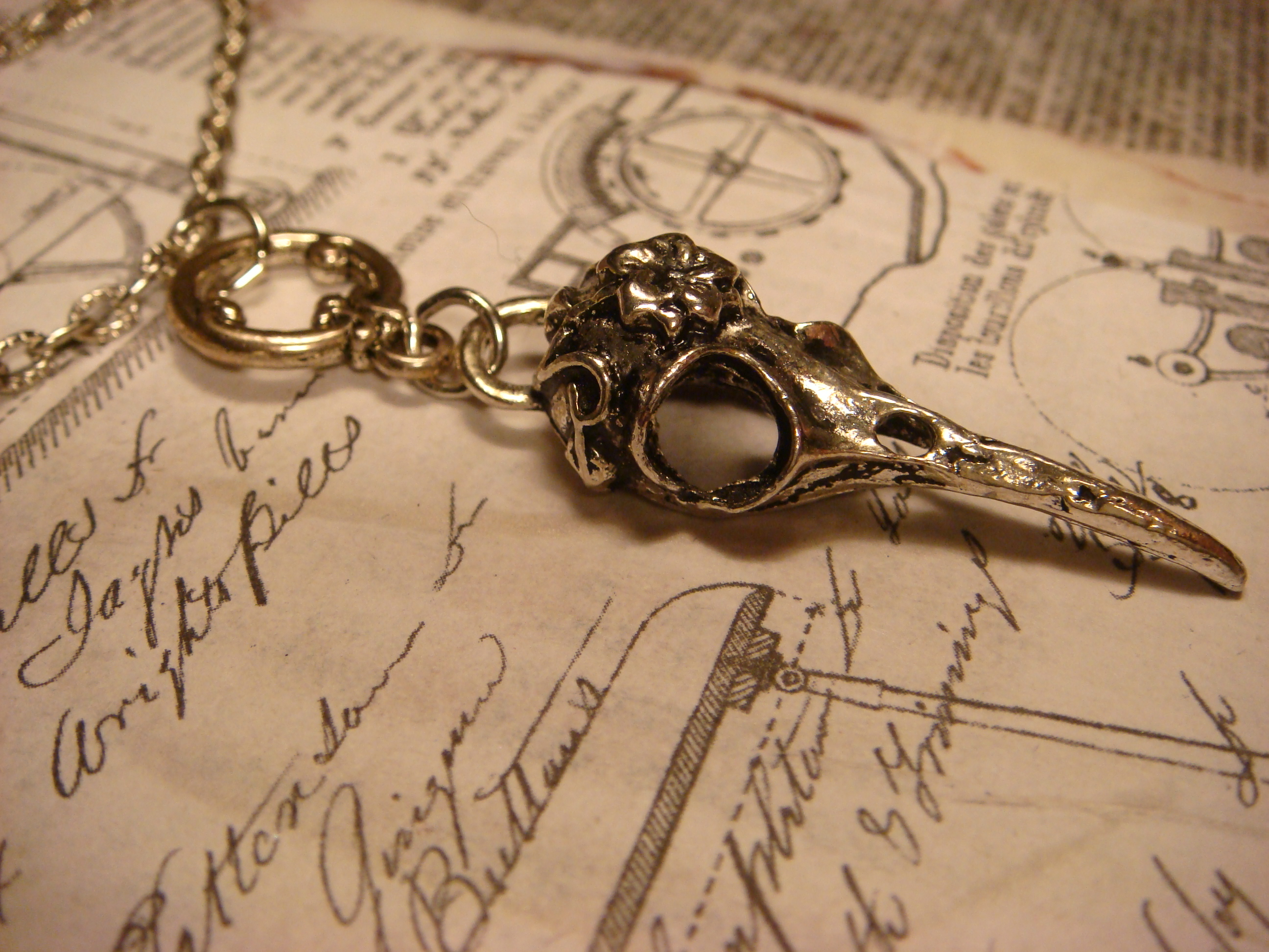 steampunk_gothic_bird_skull_pendant_necklace_136_necklaces_3.JPG