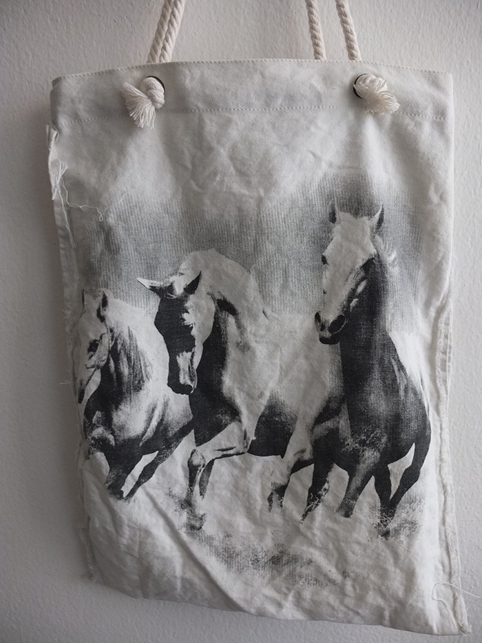 wild_horses_stallions_beach_canvas_tote_bag_rope_handle_bags_and_backpacks_2.jpg