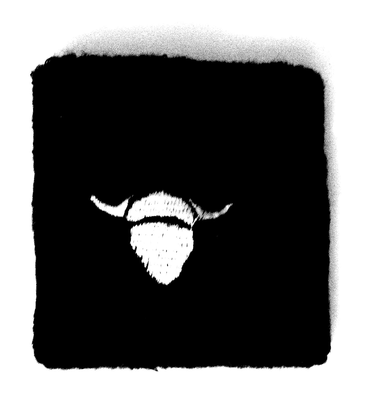 unique_jet_black_sweatband_white_embroidered_horned_bull_wrist_and_sweatbands_2.jpg