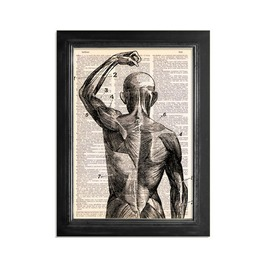 "Close Superficial Muscles Printed Upcycled Vintage Dictionary Paper 8""X10.5"" Anatomy Art Poster / Print"
