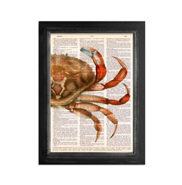 "Mysterious Crab Printed Upcycled Vintage Dictionary Paper 8""X10.5"" Anatomy Art Poster / Print"