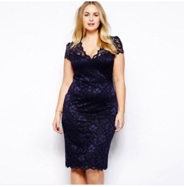 Regular/Plus Size Short Sleeve V Neck Lace Dress