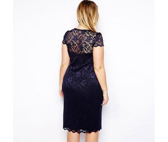 regular_plus_size_short_sleeve_v_neck_lace_dress_dresses_4.png