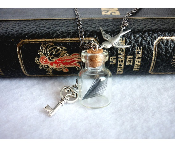 the_emprisoned_soul_necklace_dark_vial_crow_raven_nevermore_victorian_goth_key_necklaces_6.JPG