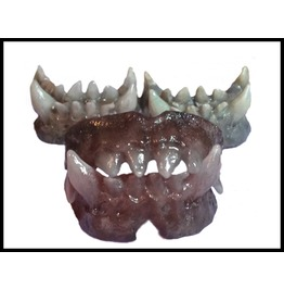 Sfx Prosthetic Creature Dentures