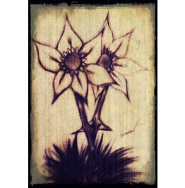 Flower Painting 8x10 Print