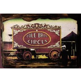 """Adventures Señor Calavera """"Circus"""""""