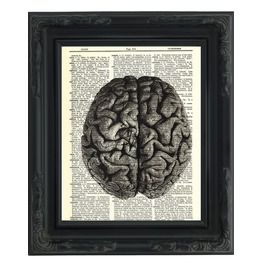 "Anatomical Human Brain Printed Upcycled Vintage Dictionary Paper 8""X11"""