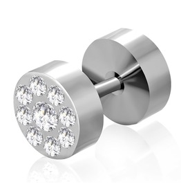 Stainless Steel Faux Ear Plug Clear Cz Pair Qpc002