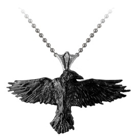 Black Raven Gothic Necklace Alchemy Gothic