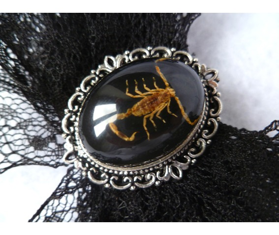 taxidermy_scorpion_hair_pin_cabinet_curiosities_oddities_victorian_pins_6.JPG