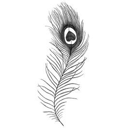 Peacock Feather Temporary Tattoo Inkwear
