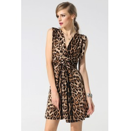 V Neck Leopard Print Dress