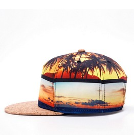 Spring And Summer Street Tide Male And 3 D Stereoscopic Mosaic Hip Hop Hats