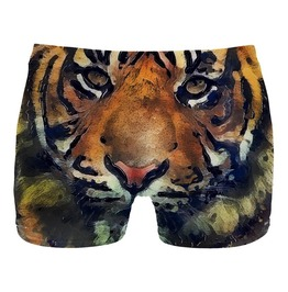 Aquarelle Tiger Underwear From Mr. Gugu & Miss Go