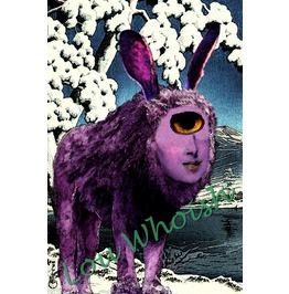 Bai Ze Bunny Ears