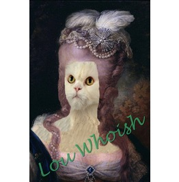 Persian Kitty Marie Antoinette