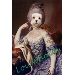 French Poodle Marie Antoinette