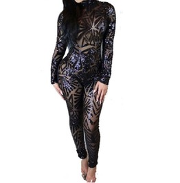 Sequin And Mesh Jumpsuit