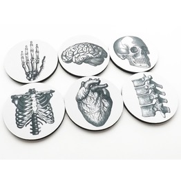 Anatomy Coasters Medical Decor Skull Anatomical Heart Brain
