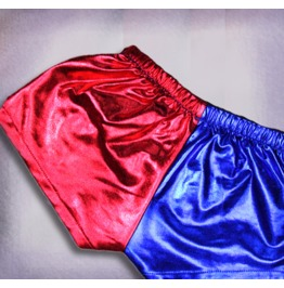 Harley Quinn Shorts . Metallic Spandex Shorts