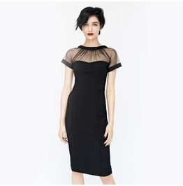 Vintage Off The Shoulder Sheer Black Fit Dress