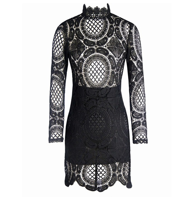 rebelsmarket_bodycon_floral_crochet_hollow_out_lace_long_sleeve_party_dress_dresses_2.jpg
