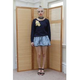 Pretty Disturbia Hawaiian Gothic Punk Mini Stripe Skater Skirt
