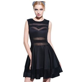 Round Neck Sleevess Black Mesh Dress