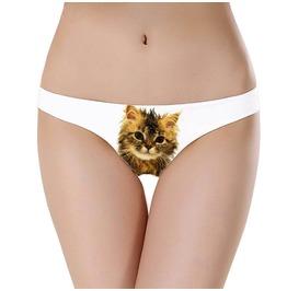 Wet Pussy Cat Underwear Kitty Underwear Cats Don't Like Water