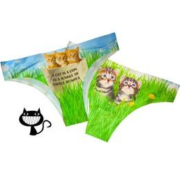 Little Kitten Underwear/Women's Little Cat Underwear Cats Playing In Grass