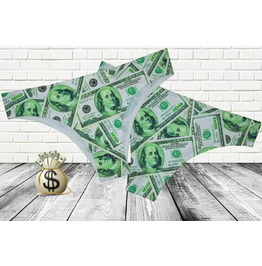 100 Dollar Bill Undies / Women's Money Panties 100 Dollar Usa Money Print