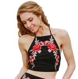 Embroidered Off Shoulder Camisole Halter Crop Top For Women