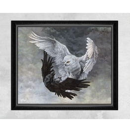 Giclee Print Of An Owl Fighting With A Raven
