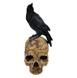 V9851 Salem Witch Skull W/ Raven