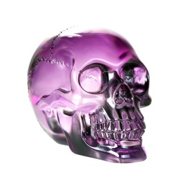 V11824 Translucent Purple Skull