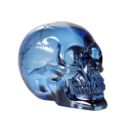 V11823 Translucent Blue Skull
