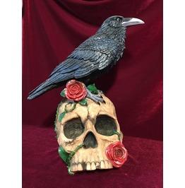 Raven's Omen