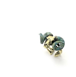 Zodiac Ring Aries Skull Ramble In Brass And Patina Green Color