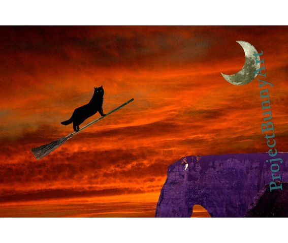 halloween_witch_cat_broom_mixed_media_artprints_2.jpg
