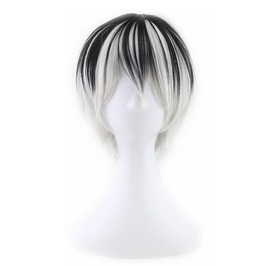 Short Straight Black Silver Synthetic Wigs