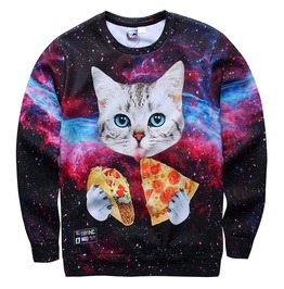 Cat Pizza Sunglasses Cartoon 3 D Print Loose Sweatshirt Pullover Men Women