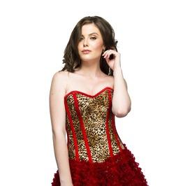 Leopard Print Side Zipper Red Tissue Skirt Waist Cincher Corset Dress