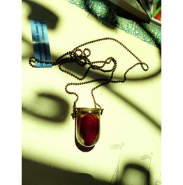 Antiqued Ball And Chain Brass Necklace With Preserved Blood Red Rose