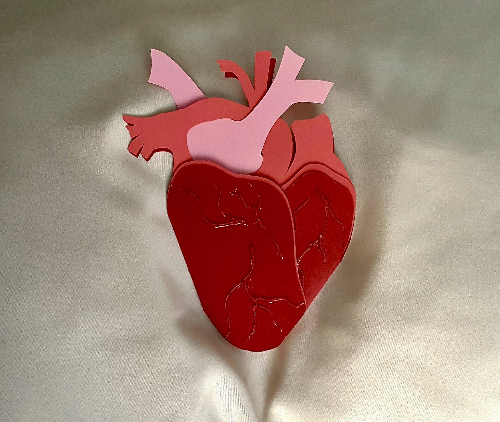 Anatomical Heart Goth Greeting Card 166856