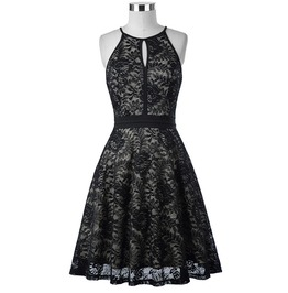Gothic Retro Vintage Sleeveless Black Keyhole Lace Dress