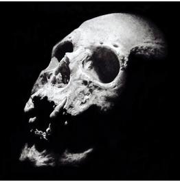 Human Skull Original Charcoal Drawing